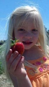 Strawberry Picking Starts Saturday May 25th