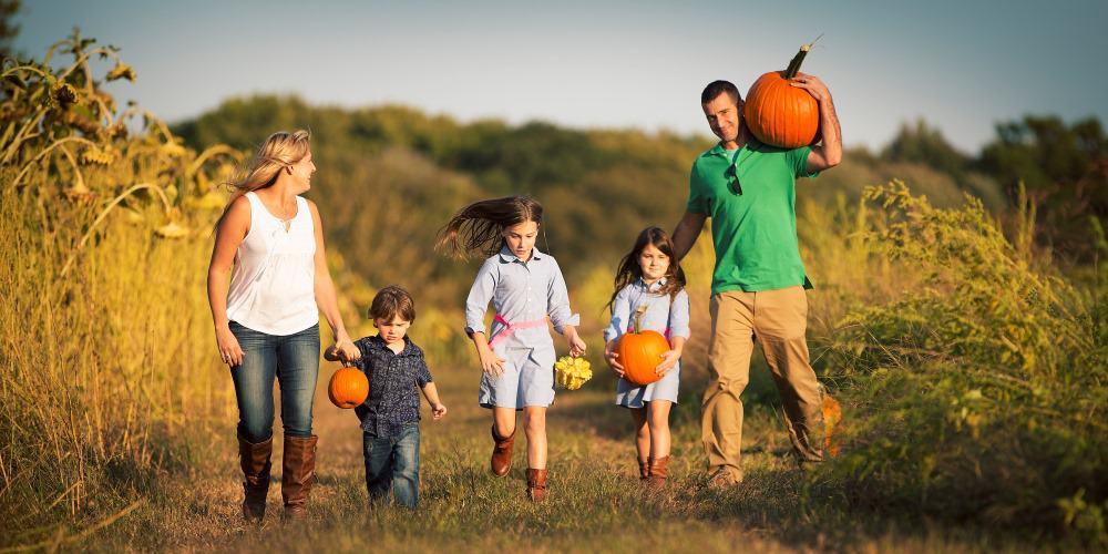 Pumpkin Picking Hayrides begin on Sept 12