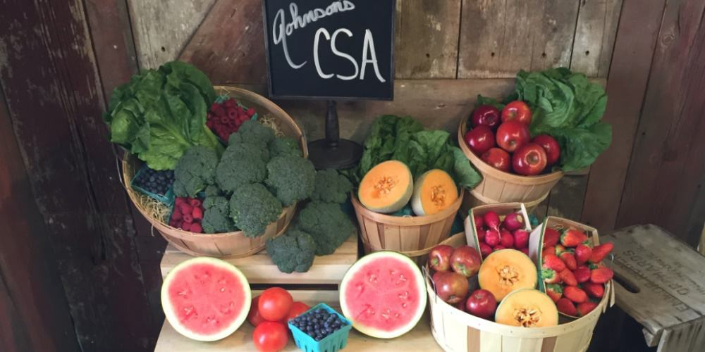 JOHNSON'S CSA is now taking Memberships for 2015