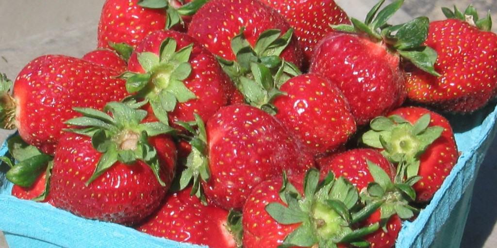 strawberry quart