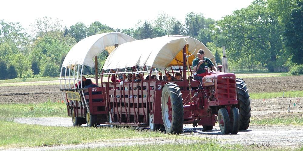 Hayrides at Johnson's Farm